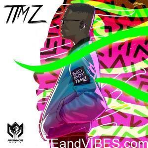 Bad Boy Timz Don't Go MP3 Audio Download