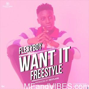 FlexyBoy – Want it (Freestyle)