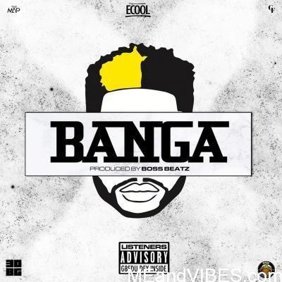 DJ ECool – Banga