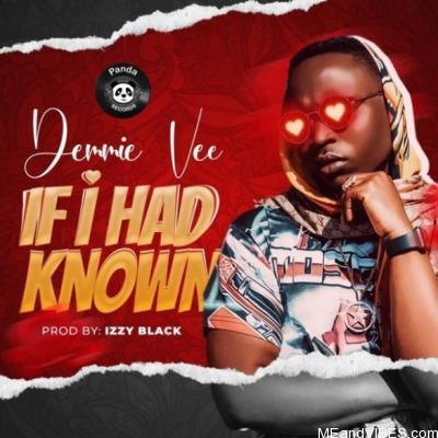Lyrics: Demmie Vee – If I Had Known