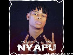 Mr Lg Ft. Nay Wa Mitego – Nyapu