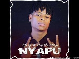 Mr Lg Ft. Nay Wa Mitego – Nyapu