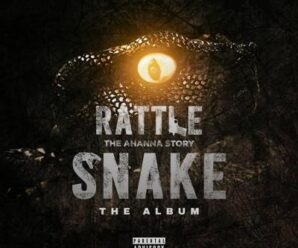 Larry Gaaga – Rattle Snake ft. Marvio