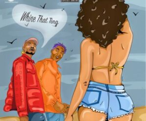 Nappy ft Bella Shmurda – Whine That Ting