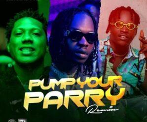 Abramsoul – Pump Your Parry (Remix) ft. Naira Marle & C Blvck