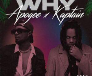 Apogee ft Kaptain – Why