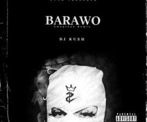 DJ Kush ft. Ajebo Hustler & Davido – Barawo (Amapiano Remix)