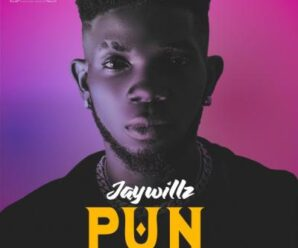 EP: Jaywillz – PUN (Please Underrate Nobody)