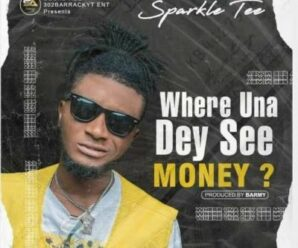 Sparkle Tee – Where Una Dey See Money