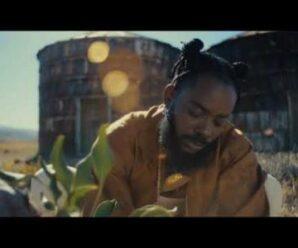 Video: Adekunle Gold – It Is What It Is (IIWII)