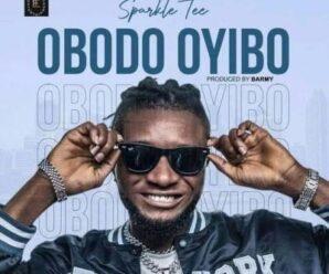 Sparkle Tee – Obodo Oyibo