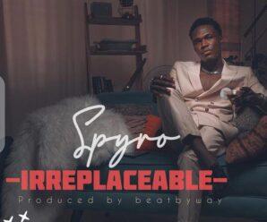 Spyro – Irreplaceable